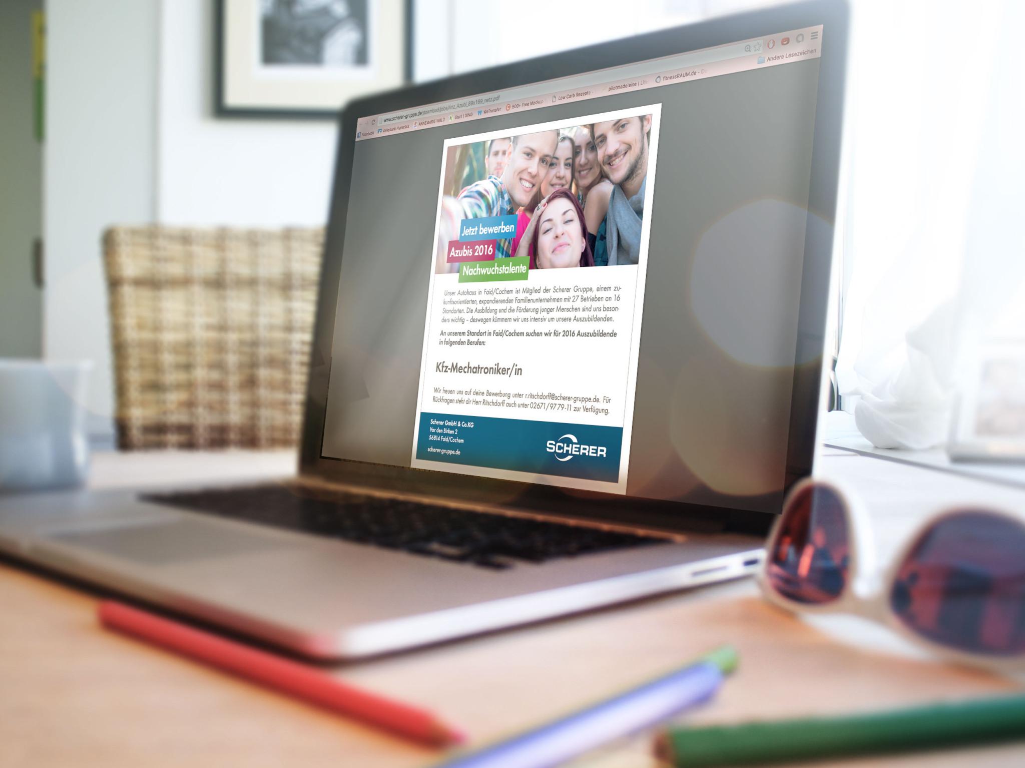Werbeagentur Schell-Wald Design Grafik- und Webdesign scherer1
